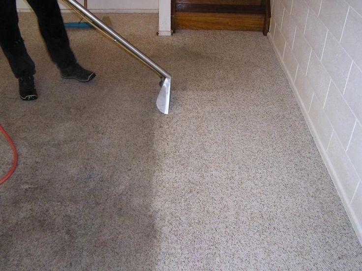 The hidden health risks of dirty carpets in the workplace