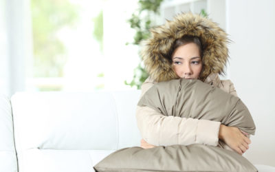 A Guide to Protecting Your Carpets During Winter
