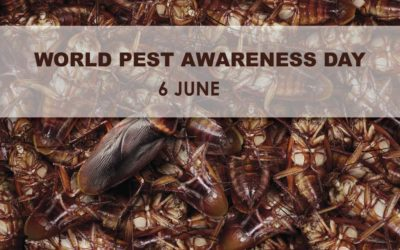 World Pest Day: Imagining a World without Pest Control